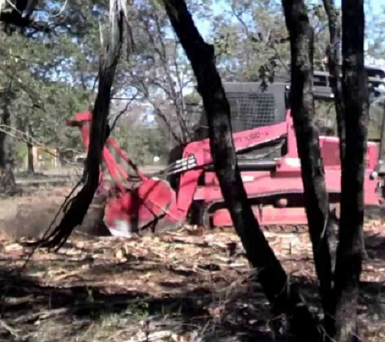 fairfield land clearing